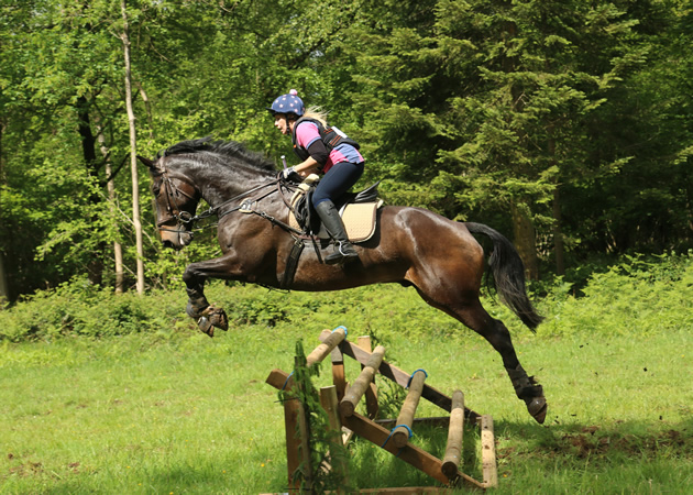 Horse Riding Lessons Hacks Hirelings And Private Tuition